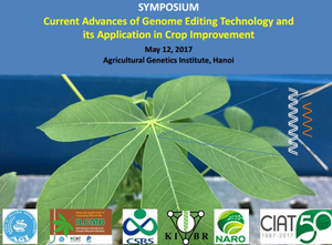 Current Advances of Genome Editing Technology and its Application in Crop Improvement